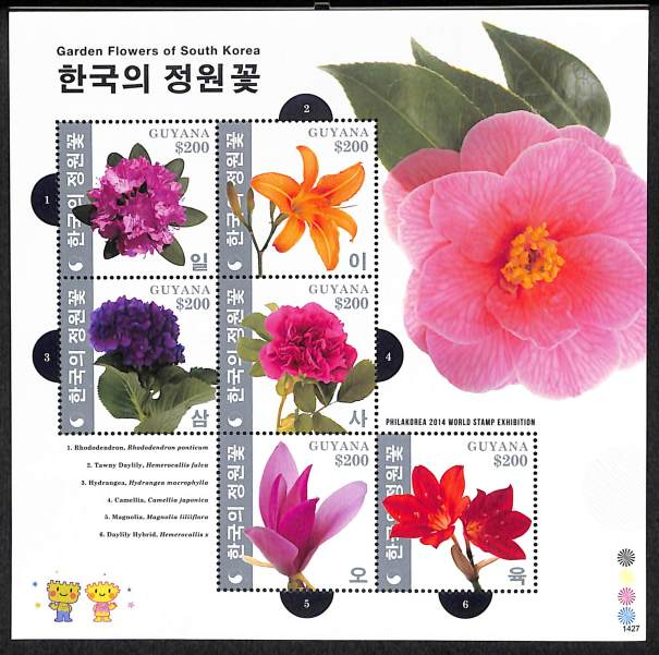 GARDEN FLOWERS OF SOUTH KOREA - 1427