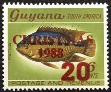 guy-1981