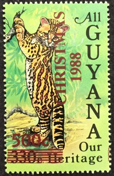guy-1983
